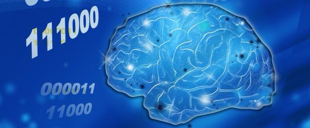 脳のデータ